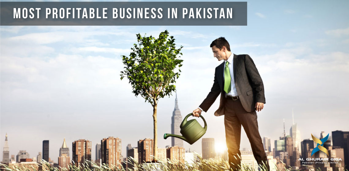 Most Profitable Business in Pakistan