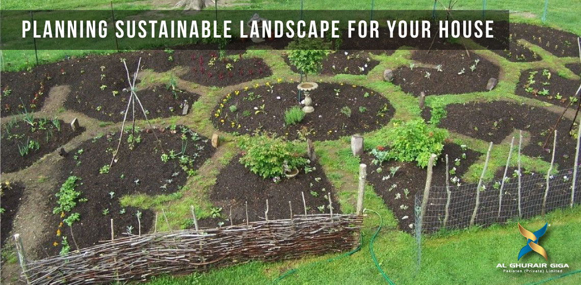 Planning Sustainable Landscape for Your House